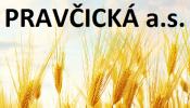 logo_pravcickaas